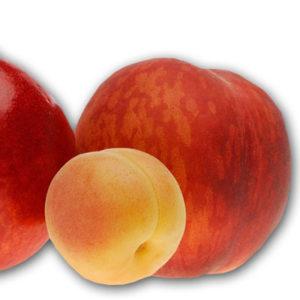Merendine alle mele e albicocca 100% BIO